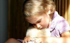 Psicólogos profesionales expertos en malos tratos y experiencias traumaticas en niños